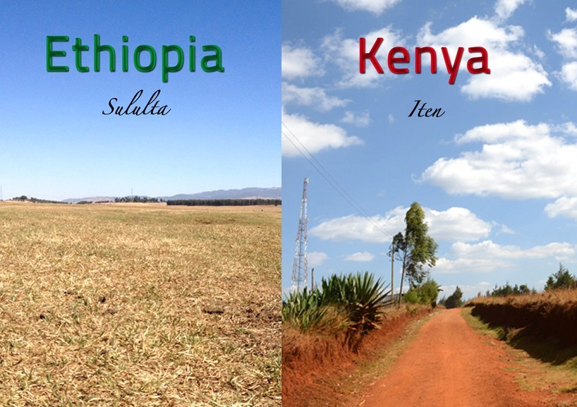 Training Camp In Kenya And Ehtiopia A Comparison Hahnertwins Anna Hahner Lisa